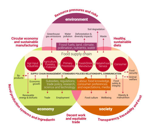 Sustainable Food Systems Framework – 3Keel